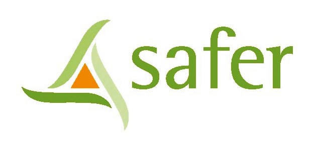 LOGO SAFER 2016